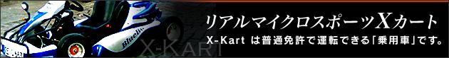 リアルマイクロスポーツXカート X-Kartは普通免許で運転できる「乗用車」です。